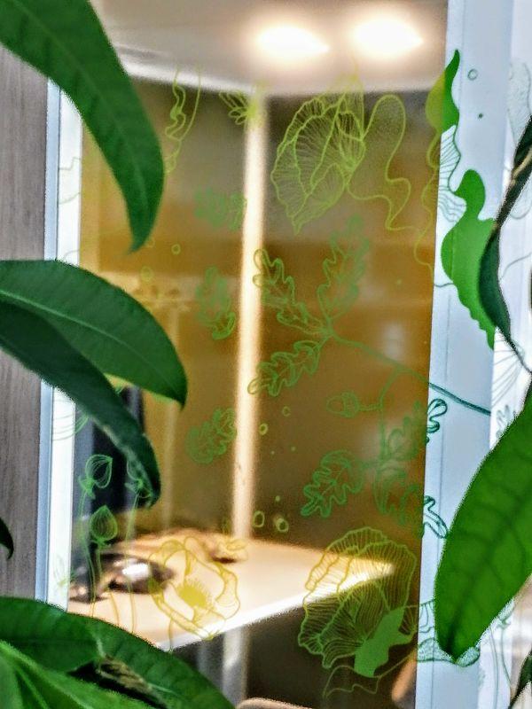 vitrophanie vegetale erable