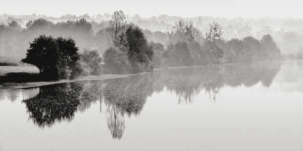 Mist on the Vienne